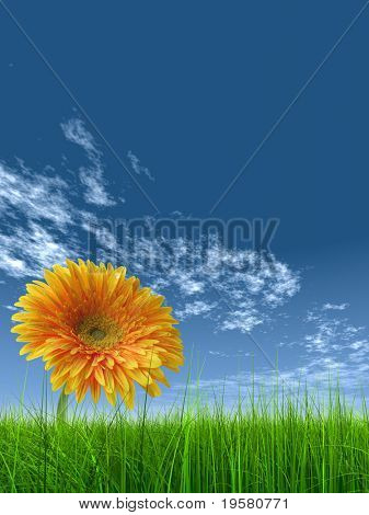 high resolution 3d green grass over a blue sky with white clouds as background and a nice yellow gerbera flower at horizon. Ideal for nature,green or sport designs.