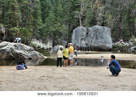 Yosemite Tourists