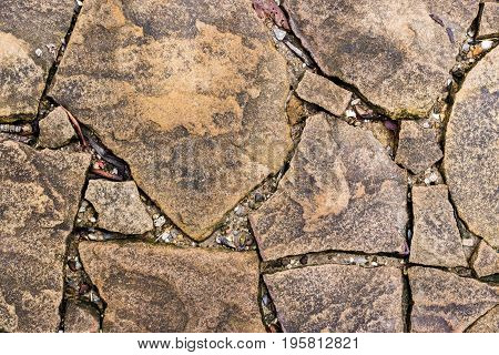 Abstract background of flagstone pathway in the garden.