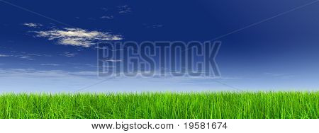 high resolution 3d green grass over a blue sky banner with white clouds as background and a clear horizon.