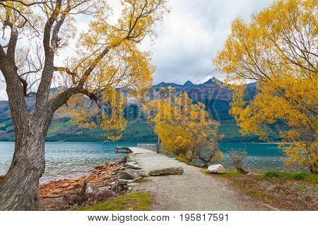 Colorful autumn leaves at Glenorchy lake South island of New Zealand