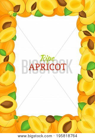 Vertical rectangle colored frame composed of delicious apricot fruit. Vector card illustration. Apricot frame frame for packaging design food, juice, jam, ice cream, smoothies, detox, cosmetics cream.