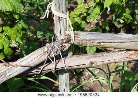 Fastening, Joining Of Wooden Boards In An Old Abandoned Garden