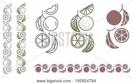 Orange tree branch. Set of monochrome designer elements