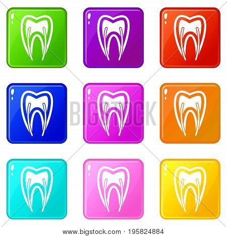 Tooth cross section icons of 9 color set isolated vector illustration