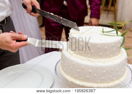 Bride And Groom At Wedding Reception Cutting The Wedding Cake