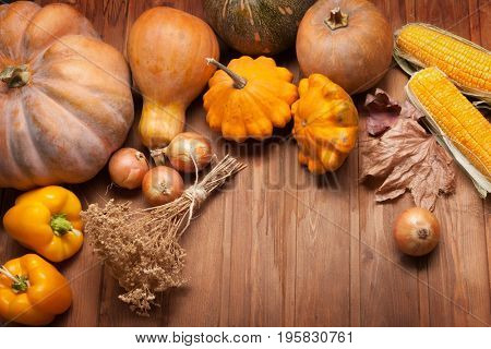 autumn pumpkins and other fruits and vegetables on a wooden thanksgiving table