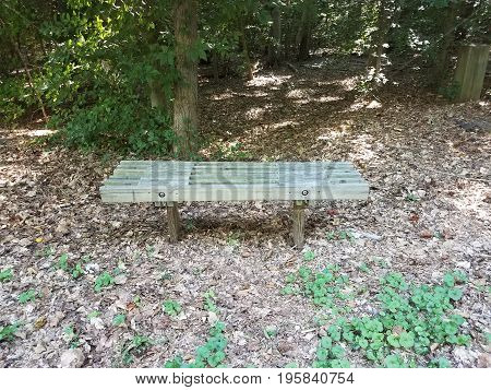 small brown wood bench with fallen leaves and plants