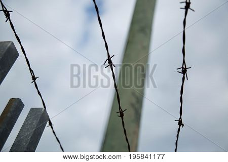 Background metal military security barb wire detail