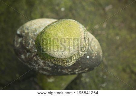 High angle view meditative mindset rocks moss