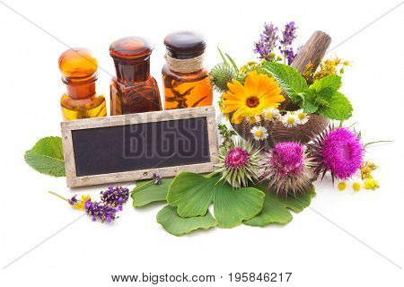 Tincture bottles and healing herbs in mortar isolated on white. Herbal medicine. Medicinal plants