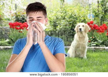 Young ill man with tissue and pet on background. Concept of allergies to dogs