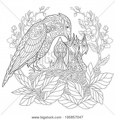 Coloring book page of jay bird feeding its newborn nestlings. Freehand sketch drawing for adult antistress colouring with doodle and zentangle elements.