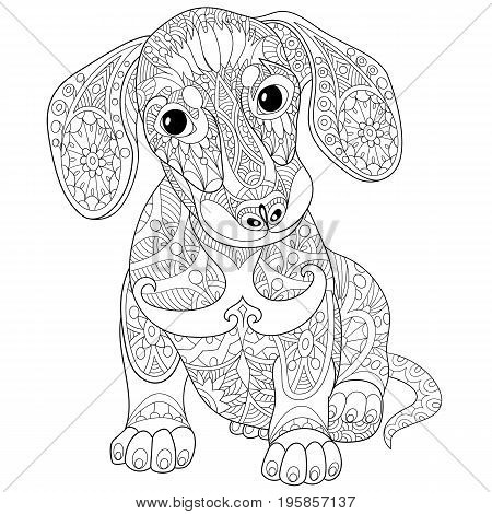 Coloring book page of dachshund puppy dog isolated on white background. Freehand sketch drawing for adult antistress colouring with doodle and zentangle elements.