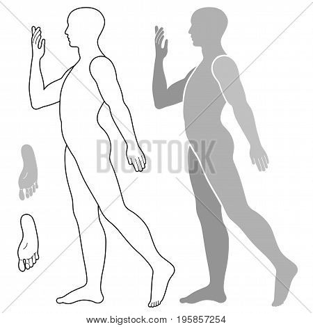 Fashion grey body full length bald template figure silhouette (going side view) vector illustration isolated on white background