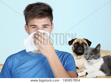 Young ill woman with tissue and animals on background. Concept of allergy