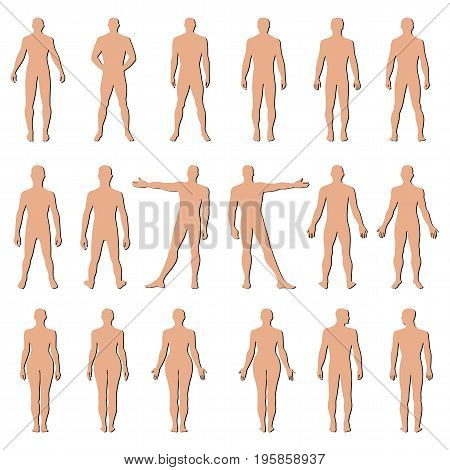 Fashion man woman body set full length bald template figure silhouette (front back view) vector illustration isolated on white background