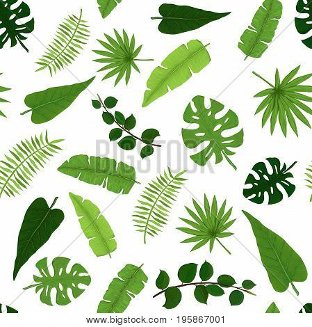 Exotic Seamless Pattern of Tropical Bright Green Foliage
