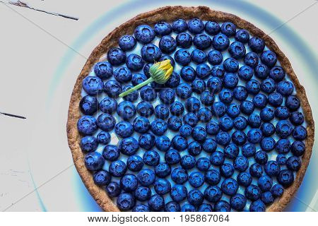 Delicious dessert blueberry tart with fresh berries, sweet tasty cheesecake, berry, bog bilberry, whortleberry pie. French cuisine.