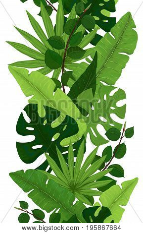 Seamless Border of Green Monstera Banana Ficus and Palm Leaves