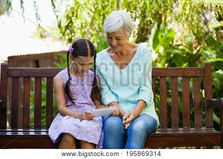 Girl showing mobile phone to grandmother while sitting on wooden bench at backyard