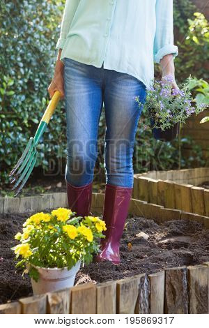 Low section of senior woman holding garden fork and potted plant at backyard
