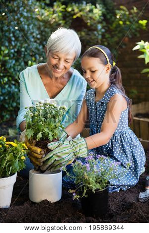 Senior woman teaching granddaughter to plant in flower pots at backyard