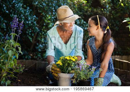 Happy grandmother and granddaughter planting flower pots in backyard