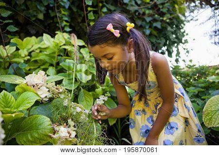 Girl looking at fresh flowers in backyard
