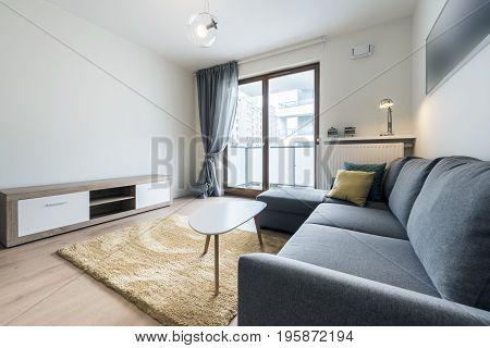 Modern stylish living room with big gray sofa