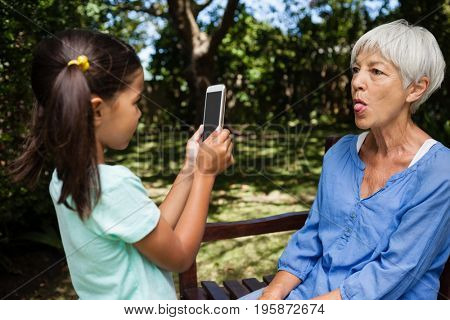 Girl taking photograph of grandmother sticking out tongue at backyard