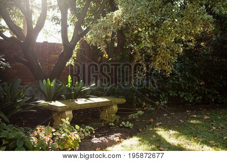 Empty stone bench by plants against surrounding wall at backyard