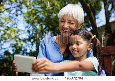 Smiling grandmother and granddaughter taking selfie while sitting on bench at backyard