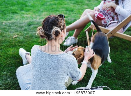 girl playing with dog at garden in summer time