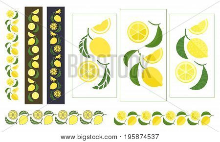Lemon tree branch. Set of colored ornaments