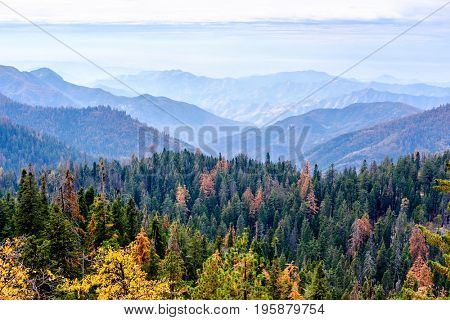 Sequoia National Park mountain scenic landscape at autumn. California, United States.