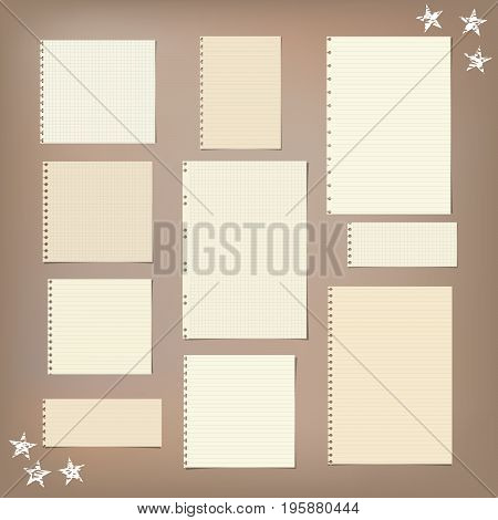 Ruled, striped, squared note, notebook, copybook paper sheets and stars on brown background
