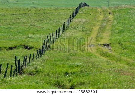 A well worn path runs along a fence and both disappear over a hill.