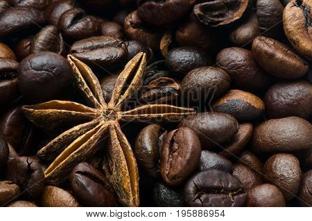 Coffee beans and anise star closeup photo.