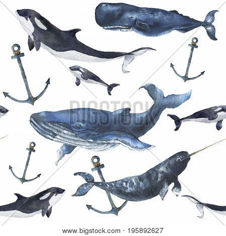 Watercolor seamless pattern with whales and anchor. Hand painted ornament with blue whale, narwhal, orca and sperm whale isolated on white background. Nautical illustration for design.