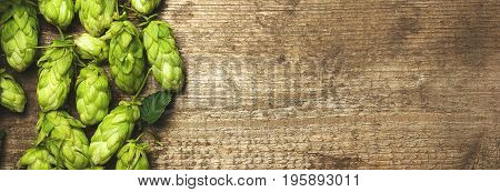 Fresh green hops on a wooden table closeup. Vintage toned, border design panoramic banner