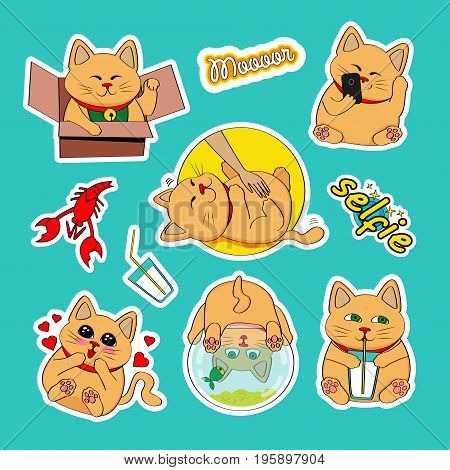 Fashion patch badges with cat selfie heart milk cancer aquarium and other. Very large set of girlish and boyish stickers patches in cartoon isolated.Trendy print for backpacks things clothes