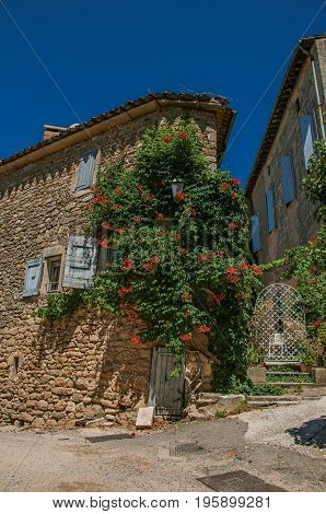 View of typical stone house with sunny blue sky and flowers, in an alley of the historical village of Ménerbes. In the Vaucluse department, Provence-Alpes-Côte d'Azur region, southeastern France