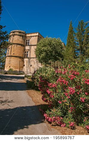 View of the Lourmarin castle with flower bush in the foreground, near the village of Lourmarin. In the Vaucluse department, Provence-Alpes-Côte d'Azur region, southeastern France