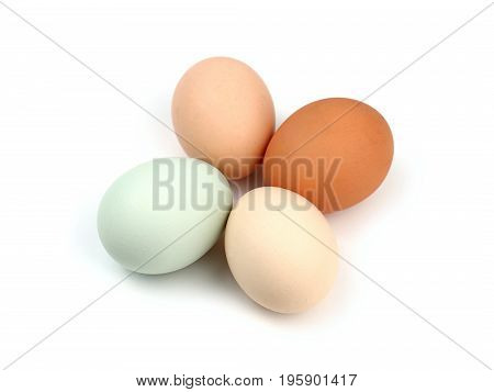 Four Multicolored Organic Free Range Chicken Eggs