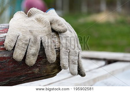 Working Gardening Gloves Lying On A Log In The Garden And Dry