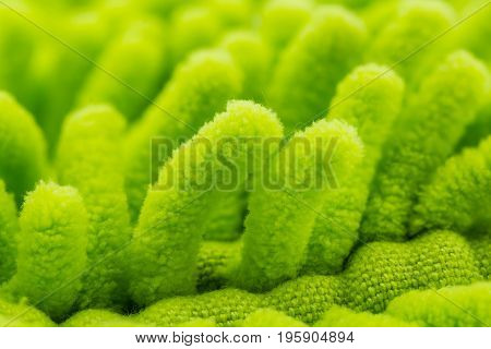 Macro of dusting brush green variety that is available soft focus
