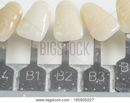 Dental teeth samples dental color shade. Dentist.