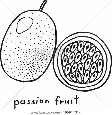Passion fruit coloring page. Graphic vector black and white art for coloring book for adults. Tropical and exotic fruit line illustration.