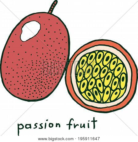 Passion fruit coloring page. Graphic vector colorful doodle art for coloring book for adults. Tropical and exotic fruit line illustration.